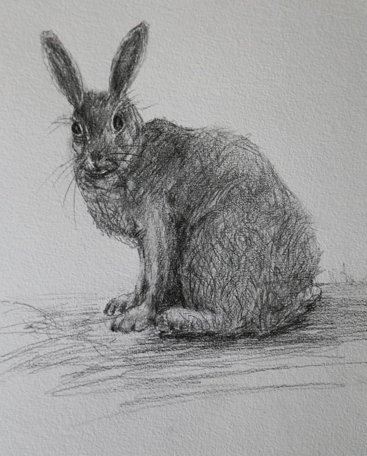 Wise old hare who becomes a mentor and guide to Blossom