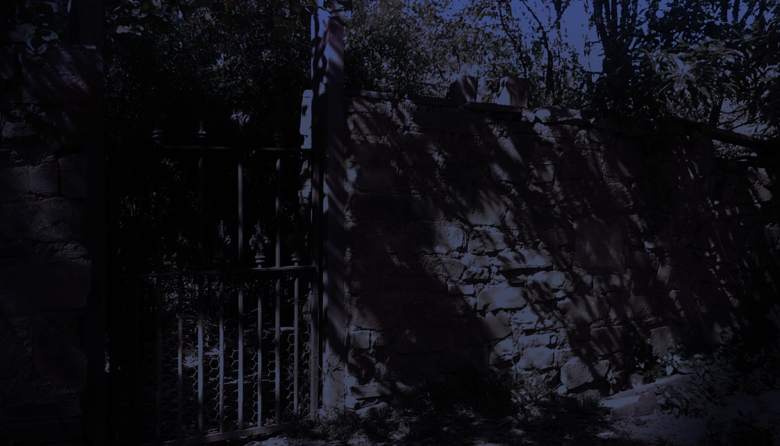Decorative steel bar gate in the garden's high stone wall with shadows and pooled moonlight in the garden and outside the gate. Shrubs and trees tumbling over the high stone wall.