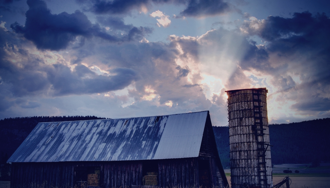 Old farm hayshed made of split timber and iron roof, with concrete silo on its right. Long grass in foreground and light shining through clouds. Evening shot.